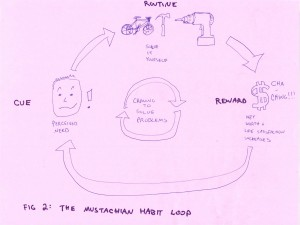 Figure 2: The Mustachian Habit Loop