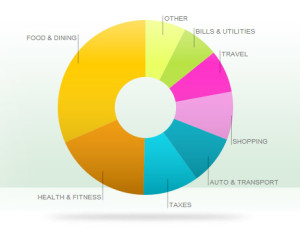 2013-exposed-all-categories-piechart